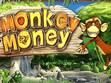 Monkey Money